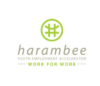 Harambee Youth Employment Accelerator - Gauteng